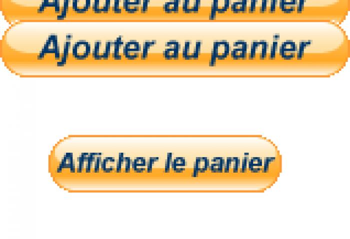 Les 2 boutons relatifs au panier Paypal. « 163e775e50af